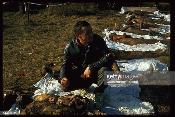 A man kneels down to examine corpses exhumed from mass graves It is not certain whether or not the dead were victims of Romanian president...