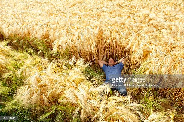 man laying down in a wheat field - lying down stock-fotos und bilder