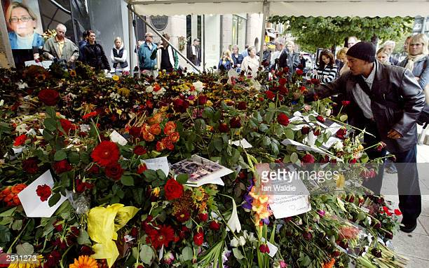 A man lays a flower for Swedish Foreign Minister Anna Lindh at the department store where she was attacked September 19 2003 in Stockholm Sweden Mrs...