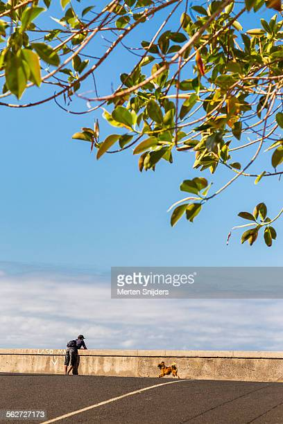 man leaning against oceanroad barrier - merten snijders stock pictures, royalty-free photos & images