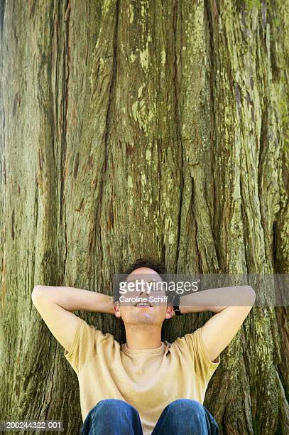 man leaning against tree, hands behind head, eyes closed - schiff stock photos and pictures