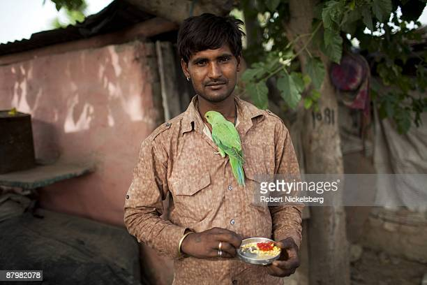A man living in a slum area feeds a parrot near newly dug roadway April 21 2009 where agricultural areas he and members of twelve families have been...