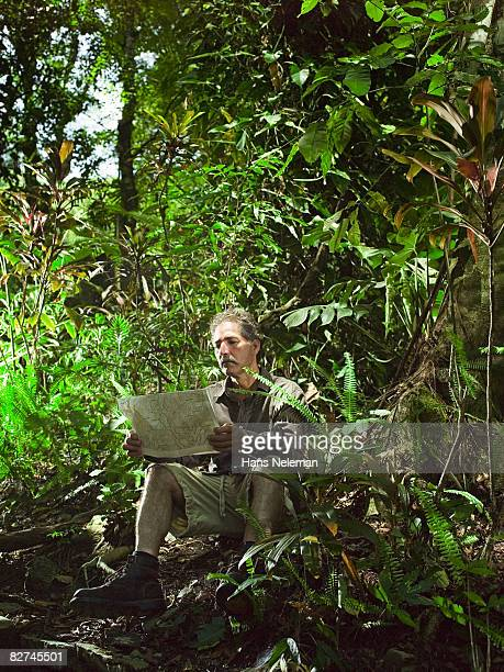 man looking at a map in the forest - las posas stock pictures, royalty-free photos & images