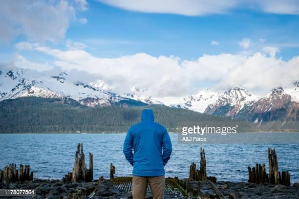 man looking at fjord and mountain range. - golfo do alasca imagens e fotografias de stock