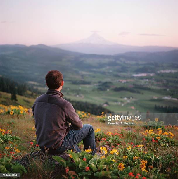 Man Looking At Mountain In Willdflower Valley