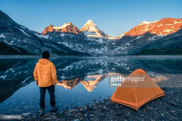 man looking at mt. assiniboine (the queen of canadian rockies) on magog lake at the first sunlight, british columbia, canada - キャンプ 1人 ストックフォトと画像