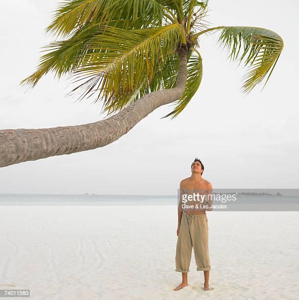 Man looking at palm tree at beach