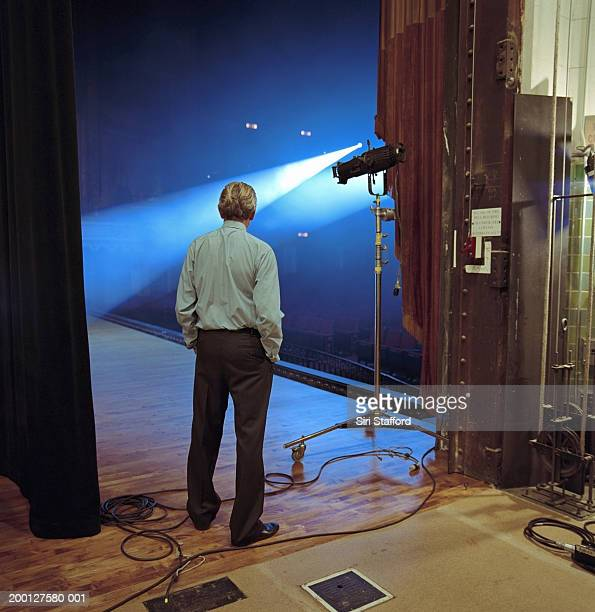 Man looking at spotlights on stage, rear view