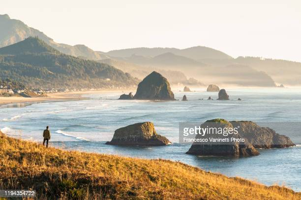 man looking at view, ecola state park, cannon beach, oregon, usa. - oregon us state stock pictures, royalty-free photos & images