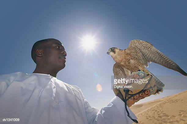 Man Looking Sideways at a Falcon Perching on His Hand