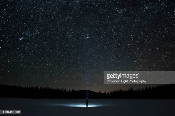 man looking up at pleiades star cluster and orion constellation, nickel plate lake, penticton, british columbia, canada - night stockfoto's en -beelden