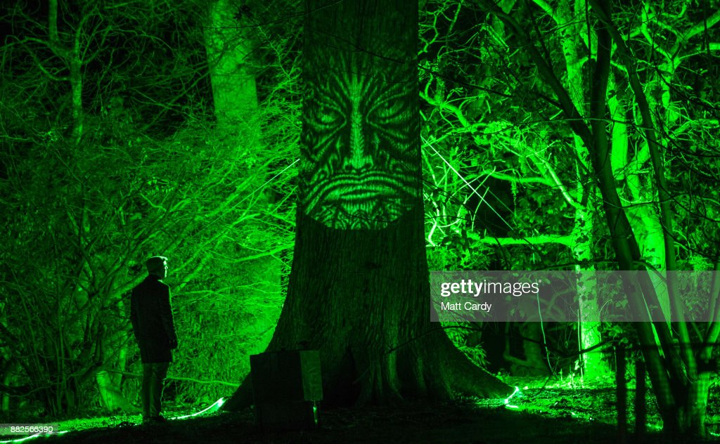 A man looks at a illuminated face on a tree at the launch of Enchanted Christmas attraction at Westonbirt Arboretum near Tetbury on November 29, 2017 in Gloucestershire, England. The popular annual attraction, which features illuminations and interactive features along the trail, will take place on long weekends from the 1 December until 18 December.