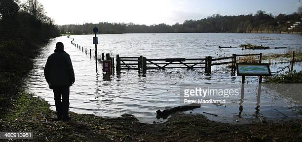 A man looks at flood water from the River Wey on January 6 2014 in Guildford England Environment Agency flood warnings are in place for parts of the...