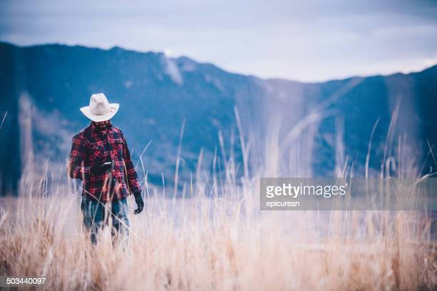 Man looks at phone while walking through field near mountains