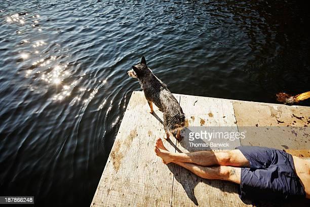 man lying on floating dock dog looking out - alleen één mid volwassen man stockfoto's en -beelden