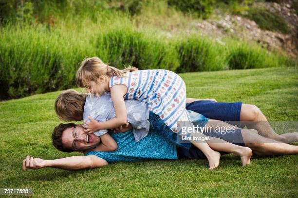 a man lying on the grass with his two children lying on top of him, playing.  - girl wrestling stock pictures, royalty-free photos & images
