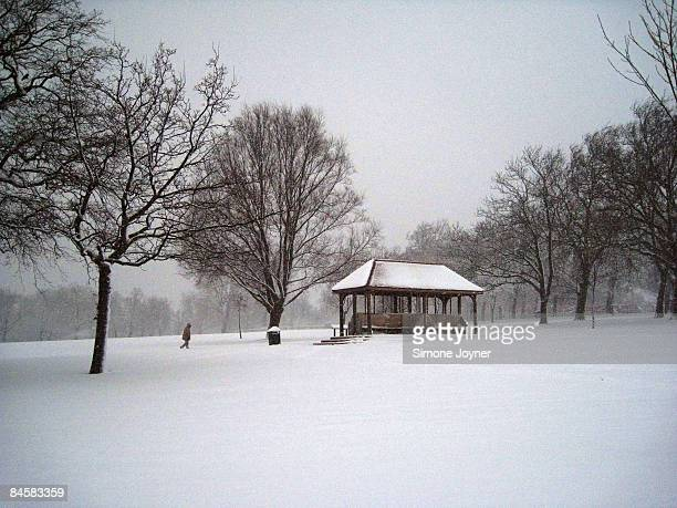 A man makes his away across a snow covered Finsbury Park on February 2 2009 in London United KingdomThe United Kingdom has suffered its heaviest...