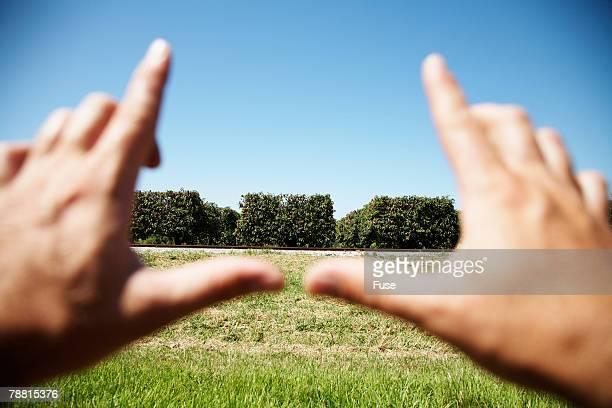 Man Making Finger Frame Gesture