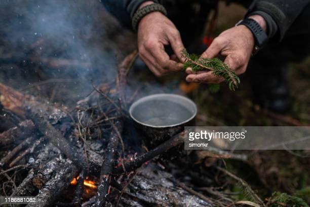 man making tea - survival stock pictures, royalty-free photos & images