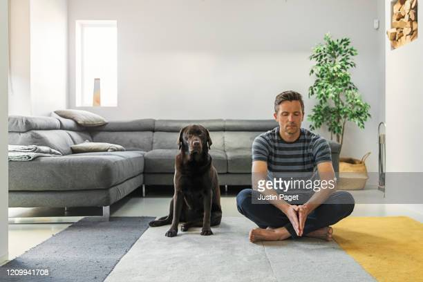man meditating with his pet dog - sofa stock pictures, royalty-free photos & images