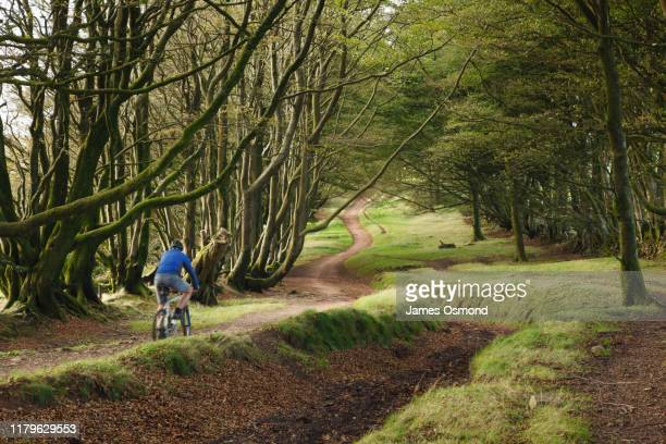 a man mountain biking along a bridle path following an ancient drove road. - bicycle stock pictures, royalty-free photos & images