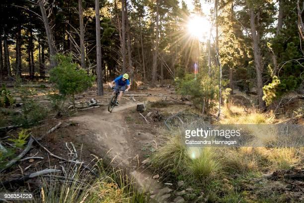 a man mountain biking through majura pines mountain bike park - bicycle trail outdoor sports stock photos and pictures