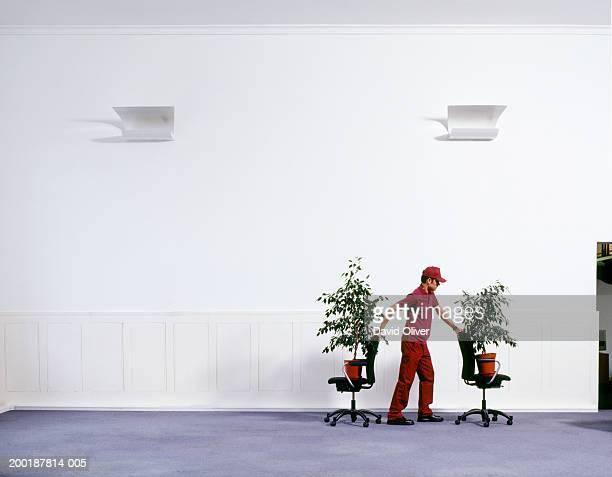 Man moving pot plants on chairs, indoors