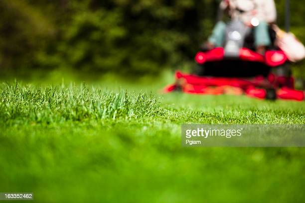 man mowing lawn - grounds stock pictures, royalty-free photos & images