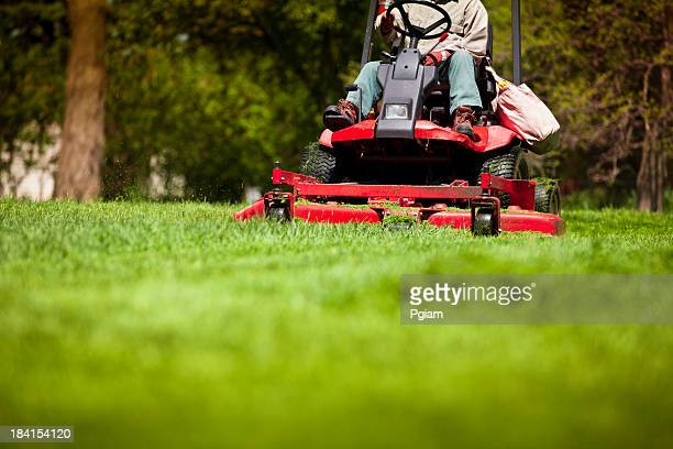 man mowing lawn - lawn stock pictures, royalty-free photos & images