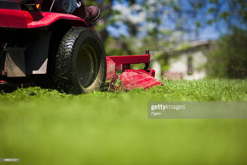 Man mowing lawn : Stock Photo
