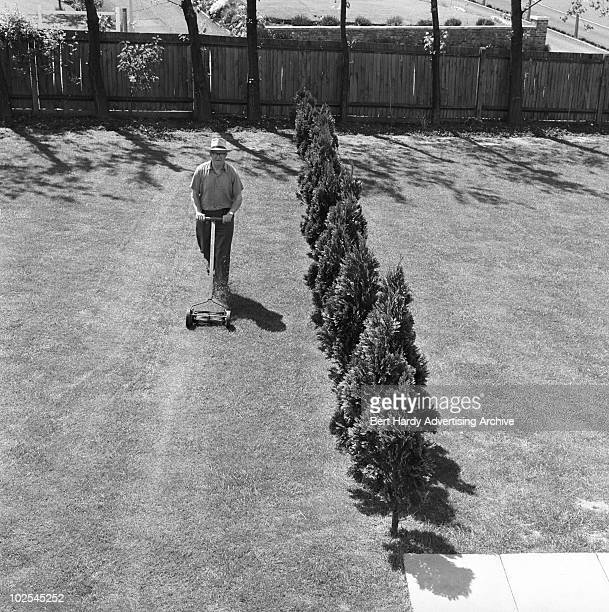 A man mowing the lawn at his home in Crystal Palace London July 1963