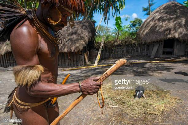 man of the dani tribe with fire tool, west-papua - astuccio penico foto e immagini stock