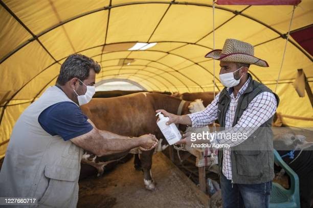 A man offers hand sanitizer to another as they wear face mask as a preacution against coronavirus pandemic at a livestock market ahead of the Eid...