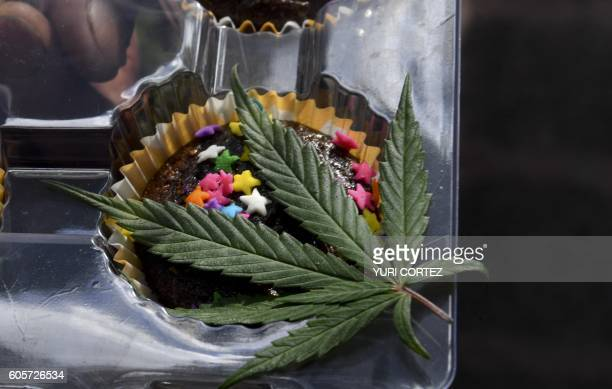 A man offers marijuana brownie during a demonstration in front of Mexican Senate building in Mexico City on September 14 2016 Dozens of young people...