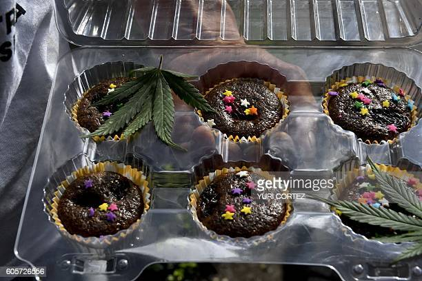 A man offers marijuana brownies during a demonstration in front of Mexican Senate building in Mexico City on September 14 2016 Dozens of young people...