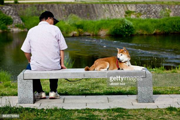 Man on a bench with a Shiba dog at the Kamo River