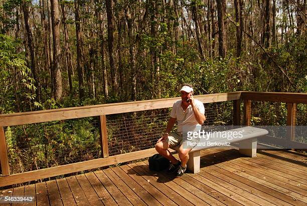 Man on a Cell Phone in a Cypress Swamp in FLA