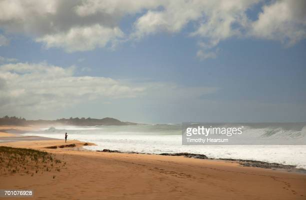 man on a deserted sandy beach looking out to sea - timothy hearsum foto e immagini stock