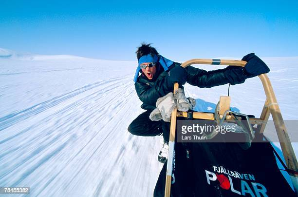 a man on a dog sledge. - dog sledding stock photos and pictures