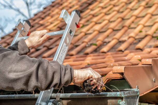 man on a ladder cleaning house gutters - gutter cleaning stock pictures, royalty-free photos & images