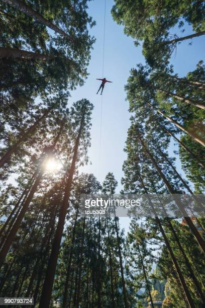 Man on a zip line flying through the forest at an outdoor adventure park.