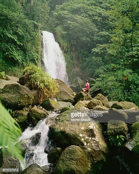 man on boulders looking at waterfall - dominica fotografías e imágenes de stock