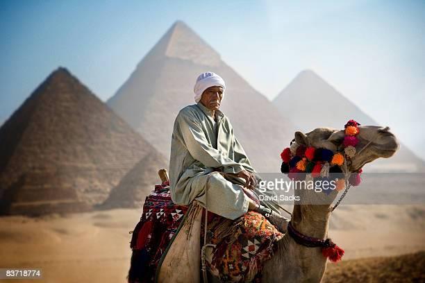 man on camel - ägypten stock-fotos und bilder