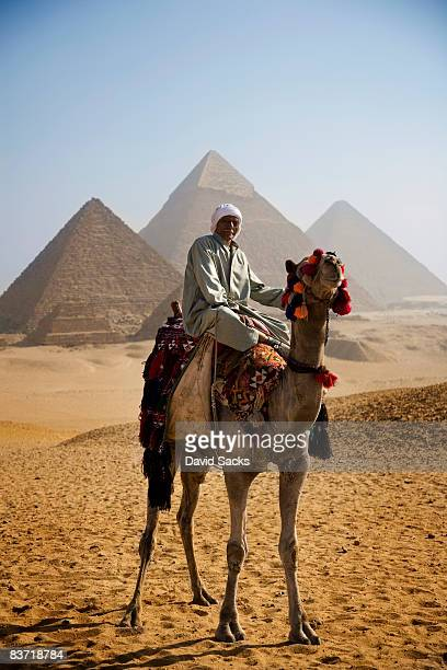 man on camel - north africa stock pictures, royalty-free photos & images