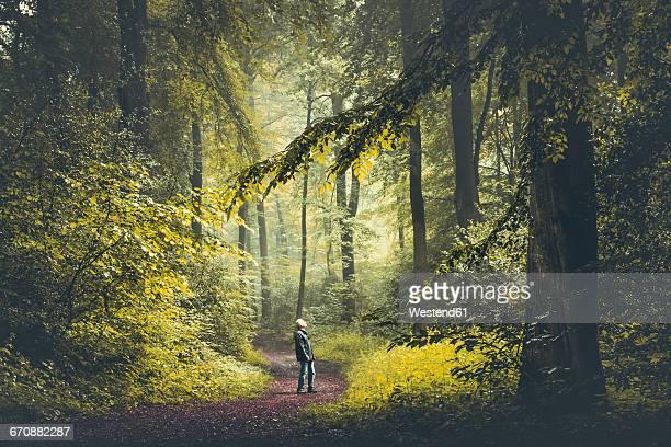 man on forest path - ruhige szene stock-fotos und bilder