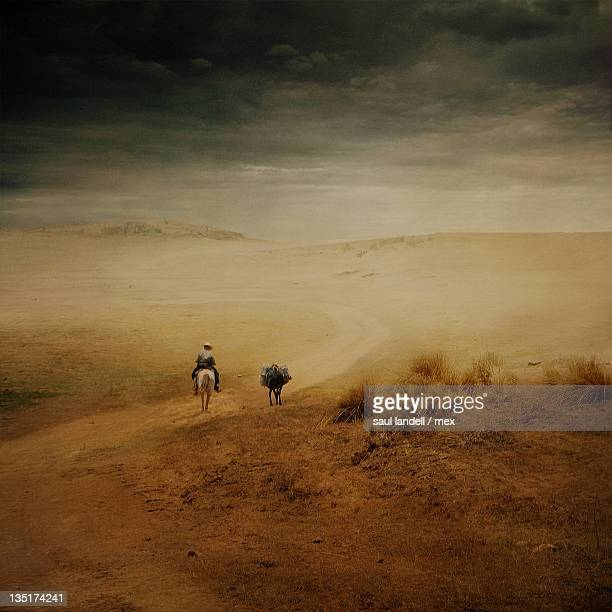 man on horseback and donkey - mexican riding donkey stock photos and pictures