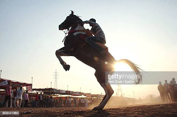 Man On Rearing Horse Against Sky