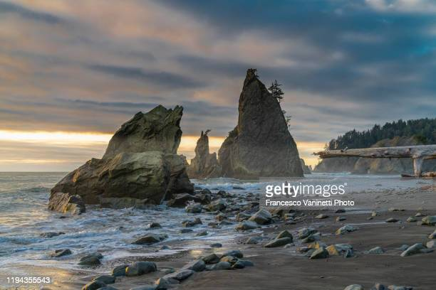man on rialto beach, forks, washington, usa. - rock formation stock pictures, royalty-free photos & images