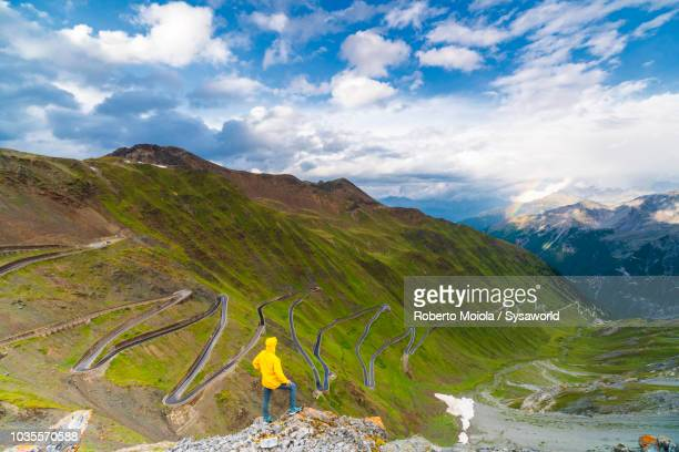 man on rocks admires stelvio pass - lombardy stock pictures, royalty-free photos & images