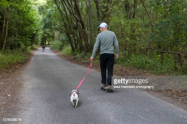 man on skateboard with dog - 1 minute 50 ストックフォトと画像